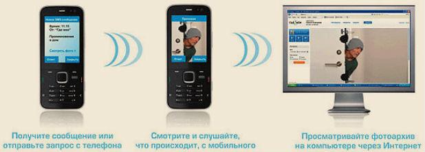 revizor1