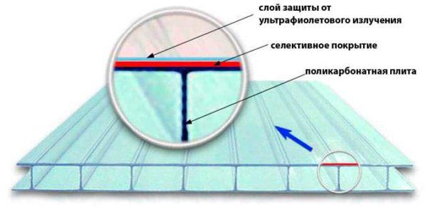struktura-polikarbonata
