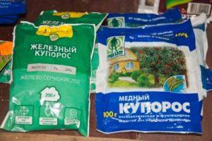 Применение железного купороса в садоводстве