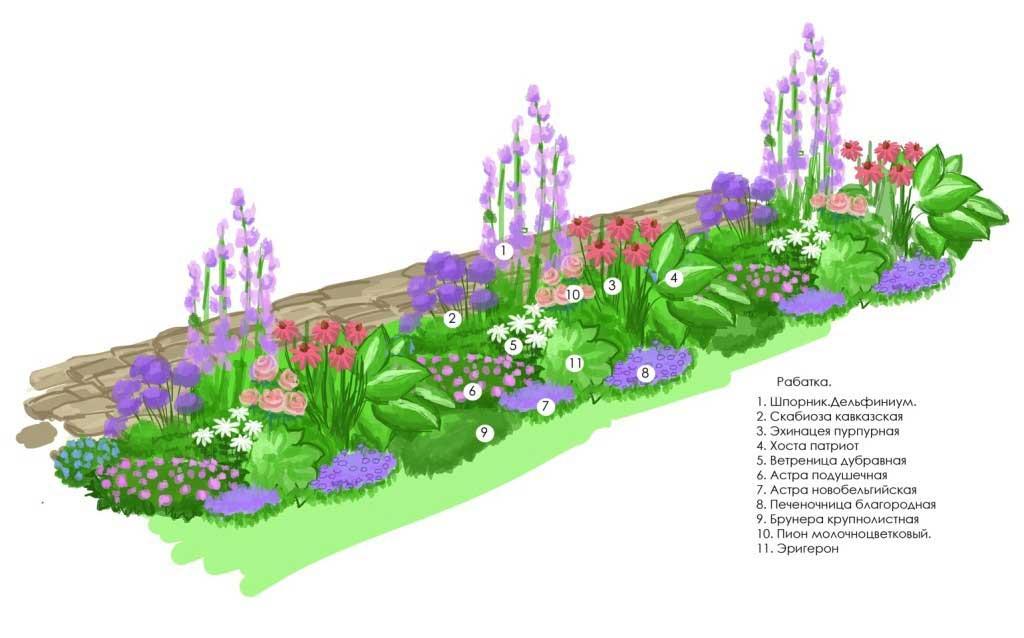 Как посадить красиво цветы на клумбе прямоугольной