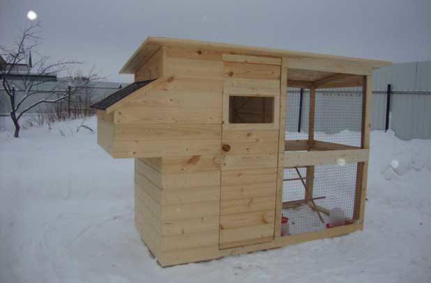 Как зимуют куры в курятнике